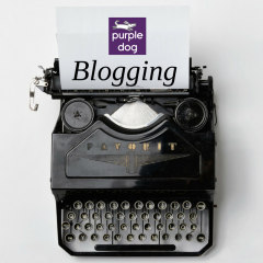 Why you should be Blogging for your business