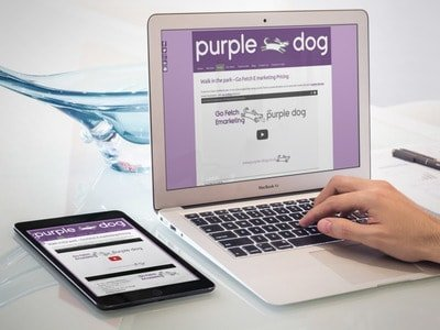 responsive web design by Purple Dog