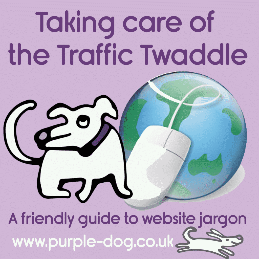 Taking care of the traffic twaddle - your friendly guide to website jargon