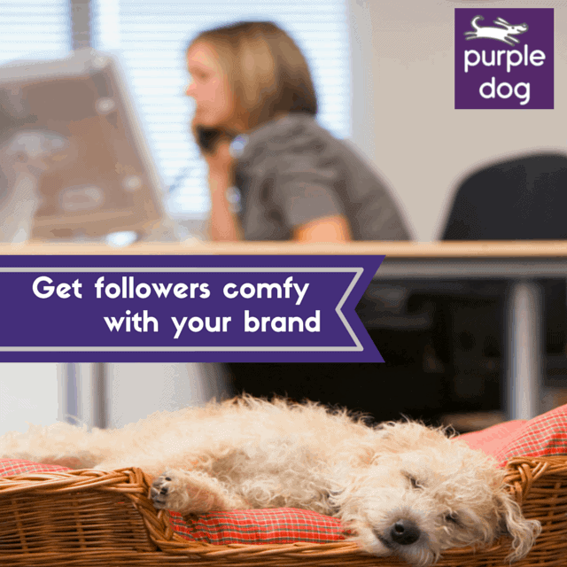 Get followers comfy with your brand