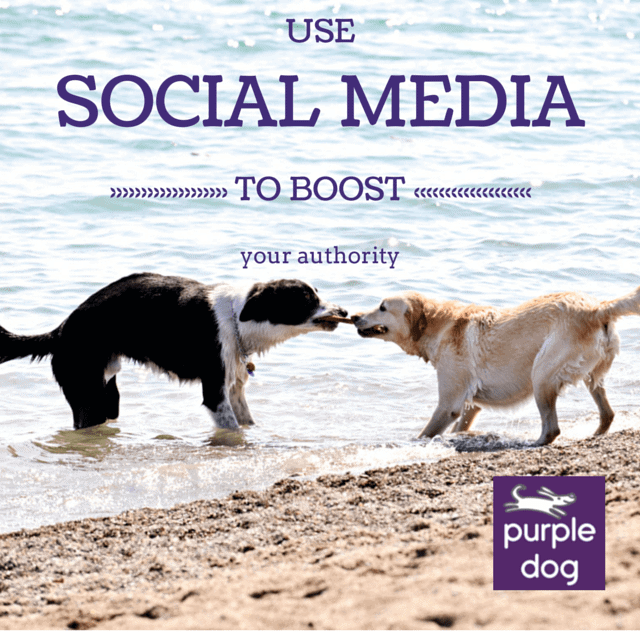 Use social media to improve your authority