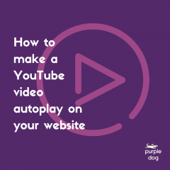 How to make a YouTube video autoplay on your website