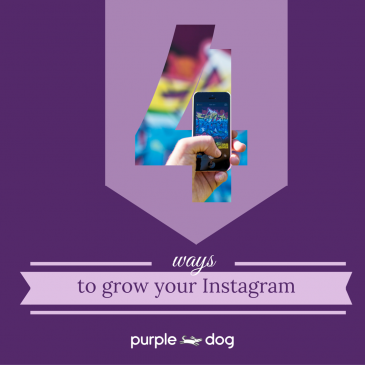 4 ways to grow your Instagram followers