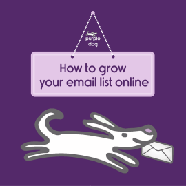 Grow your email list by collecting email addresses online