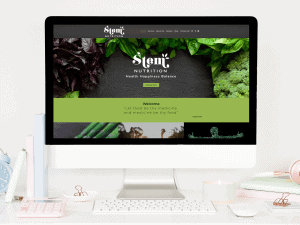 Website design for Stem Nutition