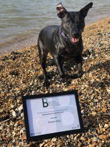 Bingo and certificate
