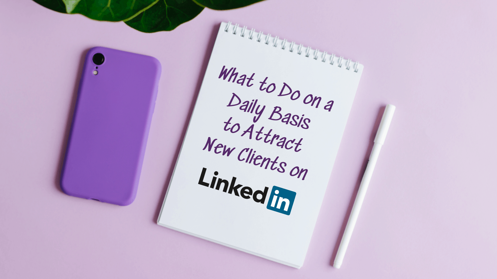 What to Do on a Daily Basis to Attract New Clients on LinkedIn