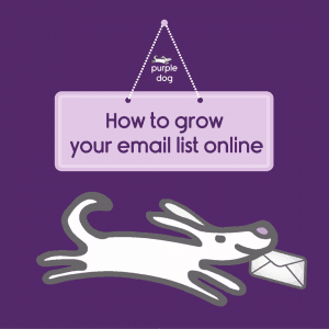 how to grow your email list online