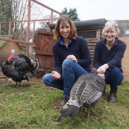 Laura Hockeys Farm